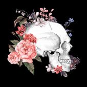 stock photo of day dead skull  - Roses and Skull - JPG