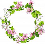pic of apple blossom  - round wreath with spring tree flowers - JPG