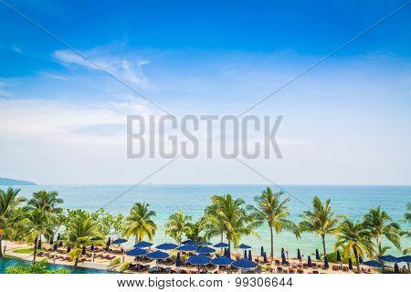 Palm tree with beautiful seascape