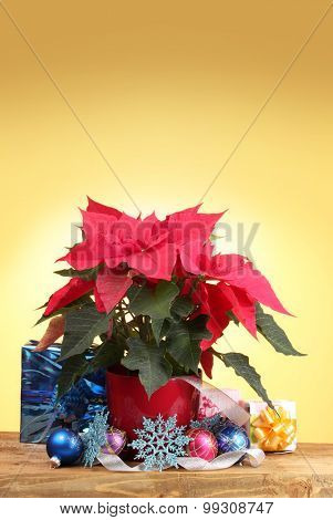 Beautiful poinsettia with christmas balls and presents on wooden table on yellow background