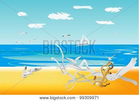 on a wild beach,