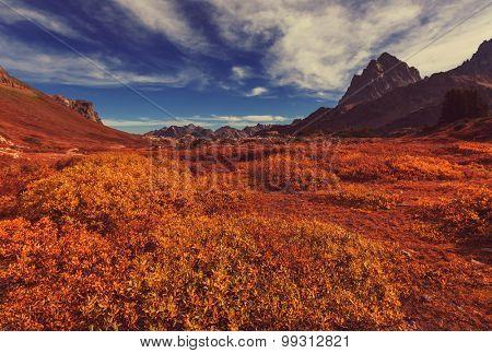 Autumn in Grand Teton National Park, Wyoming