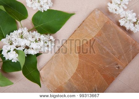 jotter on the surface of a white lilac flowers. background