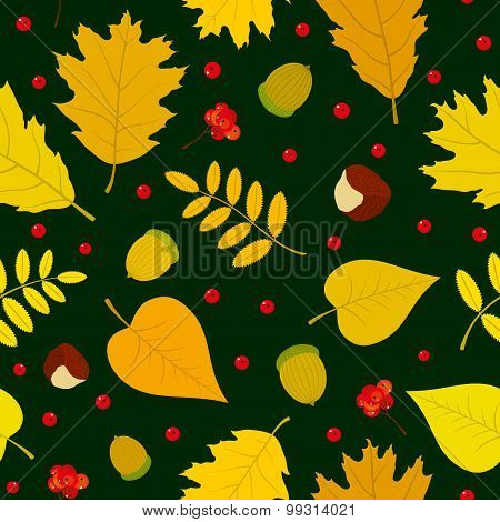 Autumn seamless pattern with rowan berries, leaves, acorn, chestnut. Vector set. Dark green backgrou