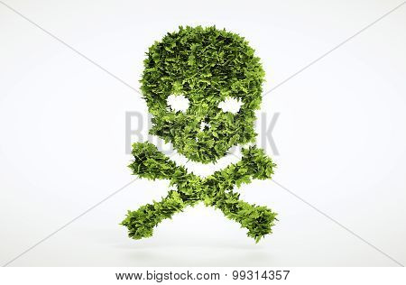 Eco Skull And Cross Bones Sign