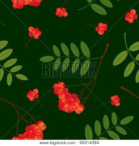 Seamless pattern with red and orange Rowan berries and leaves. Vector illustration. Dark green backg