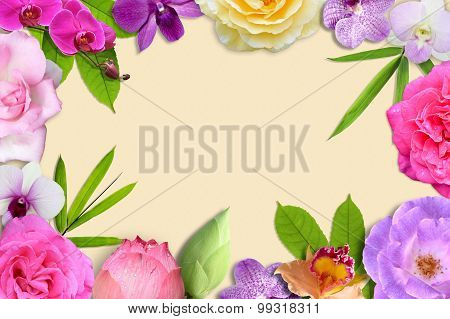 Beautiful flower blossom and leaf frame old soft paper background