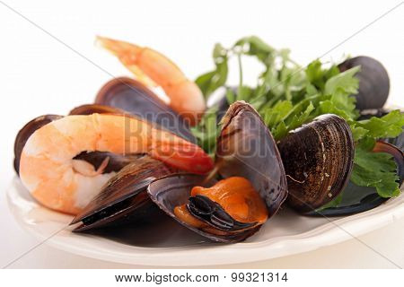 shrimp and mussel