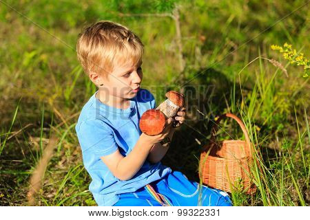 little boy picking mushrooms in green forest