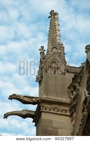 The Gargoyles Of Notre Dame Cathedral,  Paris .