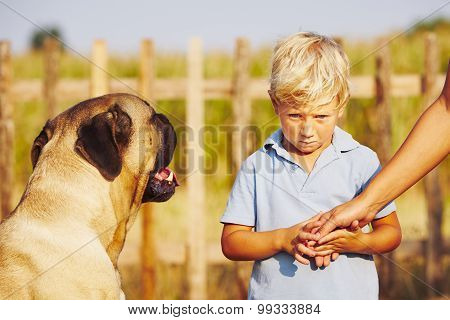 Little Boy And Large Dog
