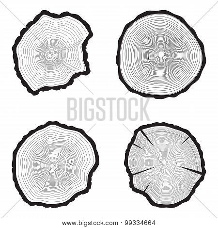 Set Tree rings background. Annual tree