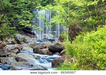 Waterfall, Tributary of the River Elbe