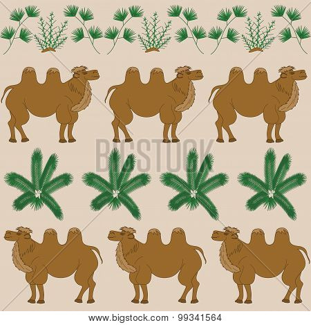 The favorite food of camel is the camel-thorn and other desert plants