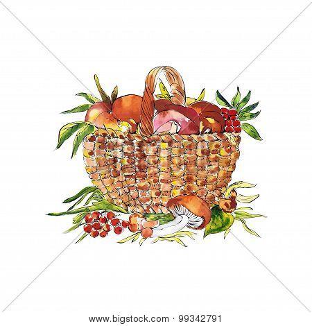 sketch illustration of basket with mushrooms