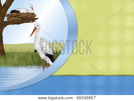Storks and Nest Bakground
