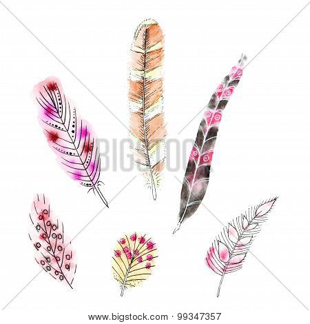 Set Of Six Watercolors Feathers