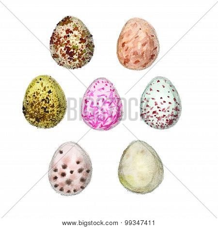Set Of Seven Watercolors Eggs