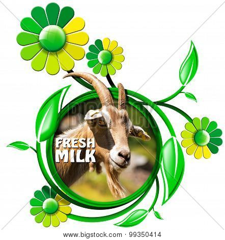 Fresh Milk - Symbol With Goat And Flowers