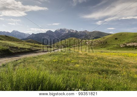 Mountain Valley Shiva