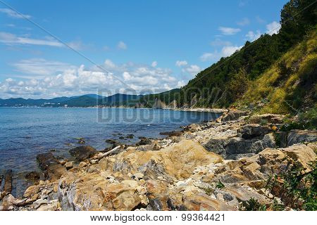 Beautiful rocky sea shore with forest