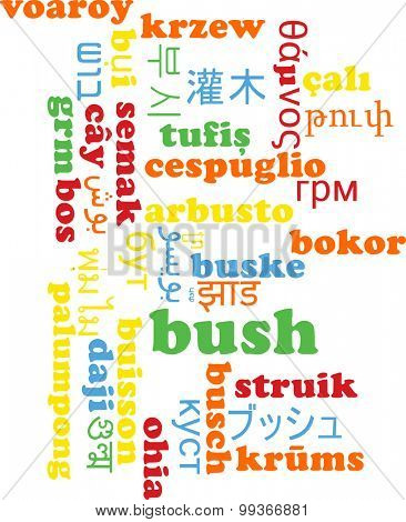 Background concept wordcloud multilanguage international many language illustration of bush