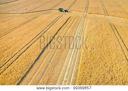 Combines And Tractors Working On The Wheat Field