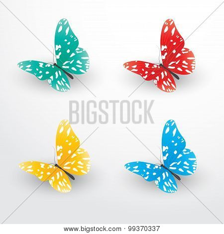 butterfly web flat icon