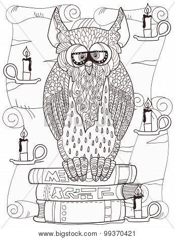 Owl  on books.