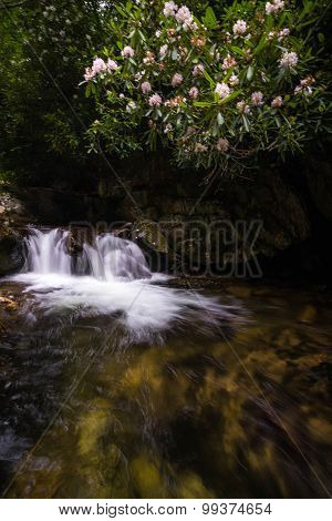 Blue Ridge Mountain Stream 6