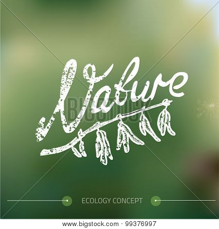 Nature color background. Vector illustration.