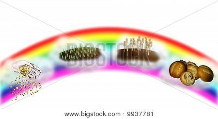 Temporada de arco iris