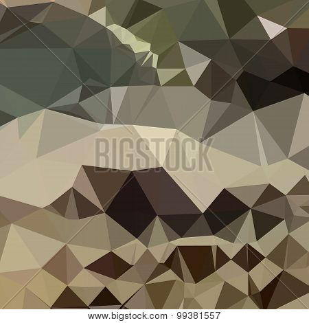 Drab Brown Blue Abstract Low Polygon Background