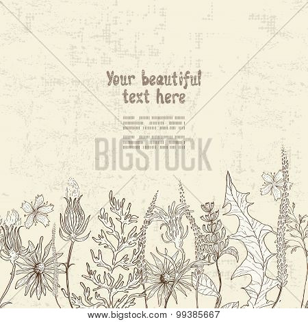 Hand Drawn Floral Seamless Border