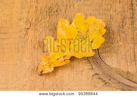 Autumnal Leaves On Wood Background