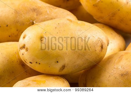 New Potato Isolated