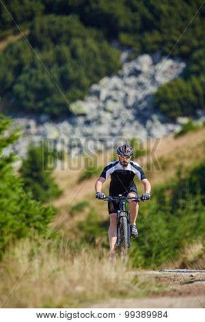 Mountain Biker On Trails