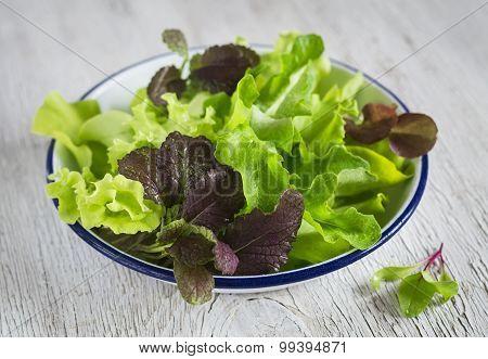 Fresh Garden Herbs On An Enamel Plate On A Light Wooden Background