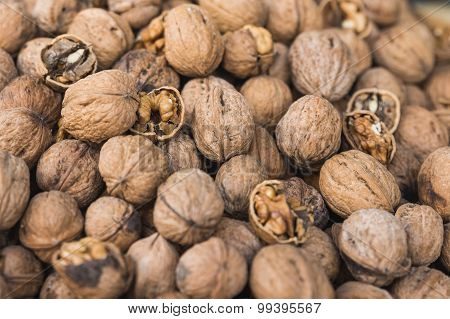 The Group Of Cracked Walnuts With Selective Focus