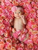 stock photo of coy  - Adorable smiling baby girl lying in a bed of pink roses - JPG