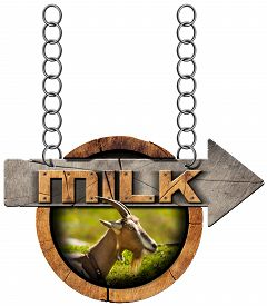 picture of goat horns  - Wooden sign with directional arrow with text Milk head of goat with horns - JPG
