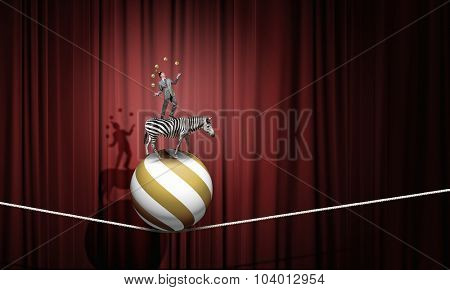 Young businessman standing on zebra and juggling with balls