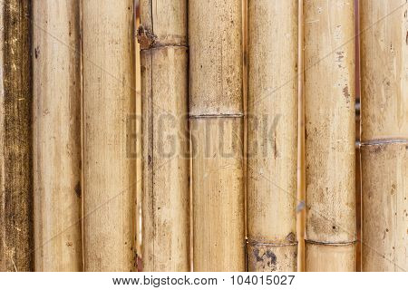 Old Brown Bamboo Background
