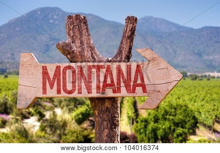 Montana wooden sign with winery background