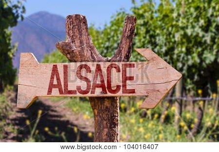 Alsace wooden sign with winery background