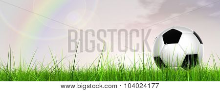 Concept or conceptual 3D soccer ball in fresh green summer or spring field grass with a blue sky background rainbow banner