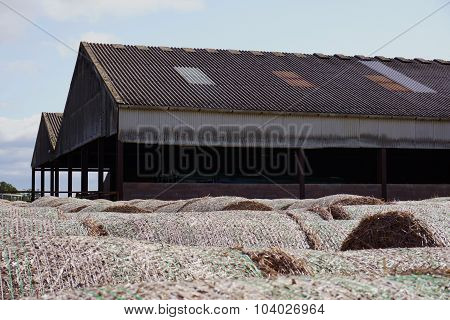 Hay Bales Stored Outside A Pole Barn