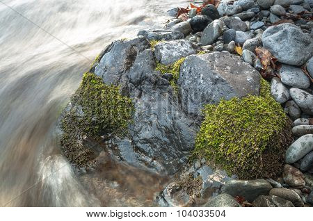 Black Mossy Rock By The Fast Flowing River