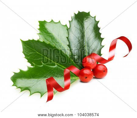 Holly berry leaves  and red ribbon, Christmas decoration isolated on white background