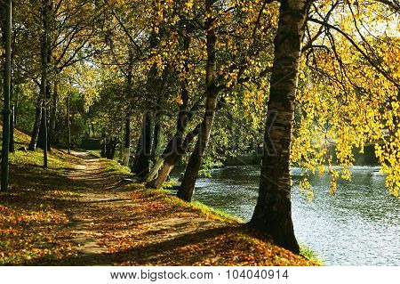 Walkway In Autumn Park Near Lake.